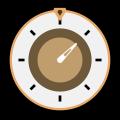 Steam Timer